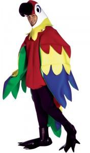 Deguisement perroquet